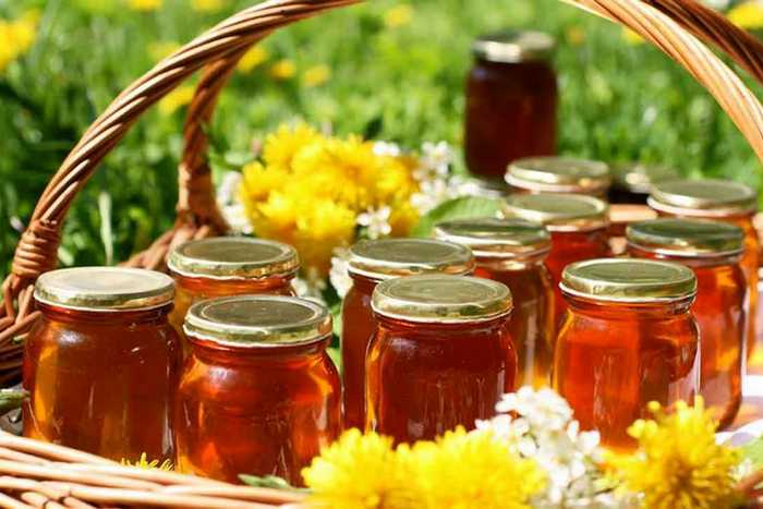 Полезные свойства меда, состав, виды